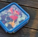 Is Tupperware BPA free