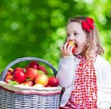 small child with a basket of apples that can easily be incorporated into a bento lunch box to promote healthy eating for children