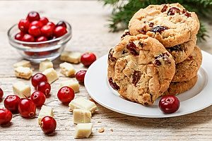Christmas cranberry cookies that are suitable for a bento lunch box for kids to bring with them on the go